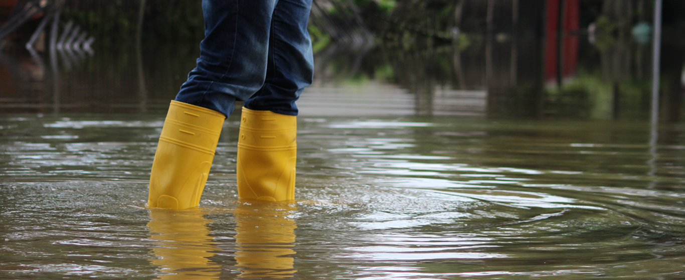 Yellow Boots in Flood