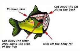 preparefish