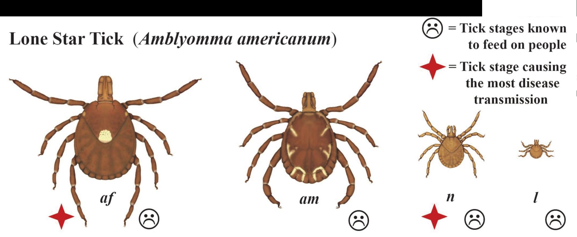 "Bugs"" & Human Health – Environmental Epidemiology"