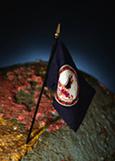 virginia flag-globe