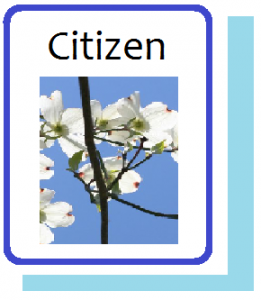Citizen Information