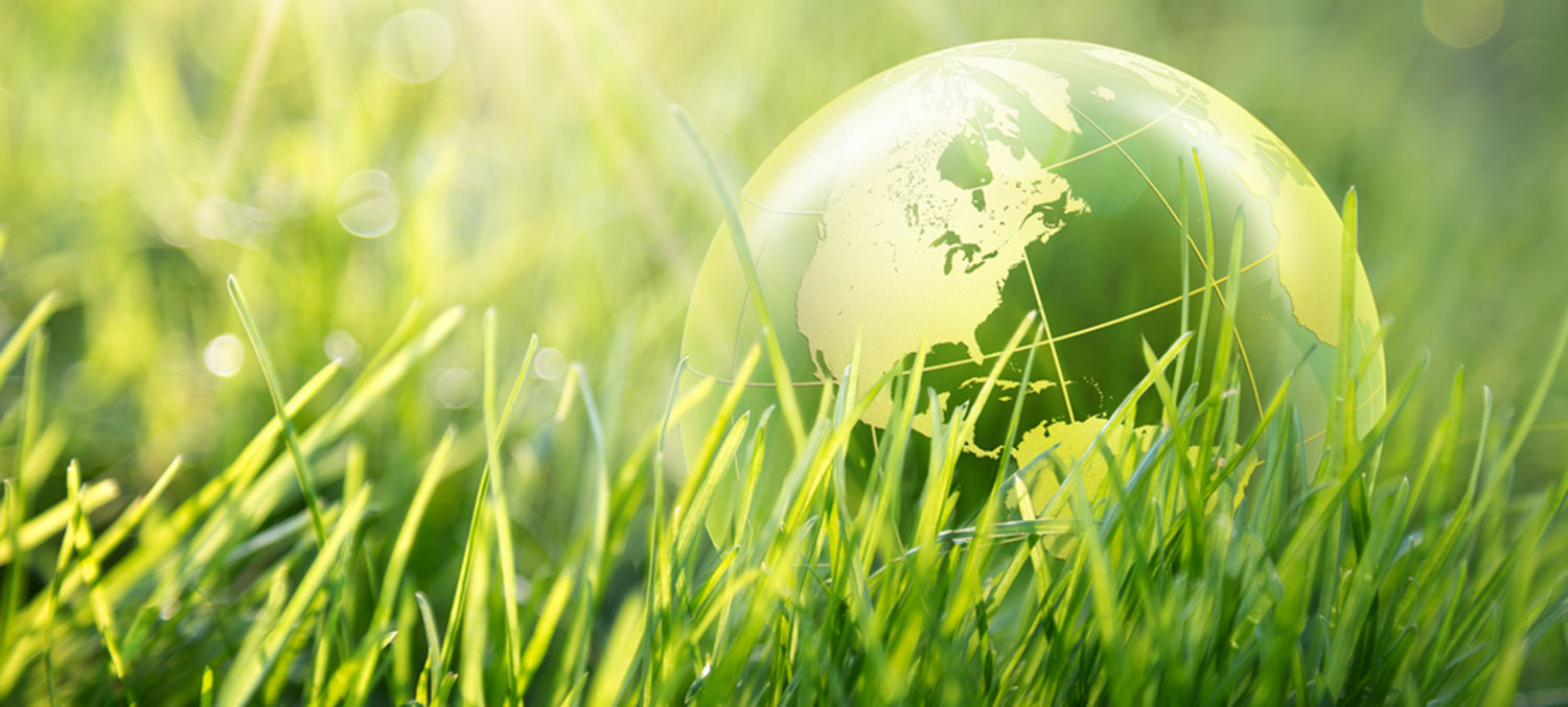 environmental health to promote and protect the health of all