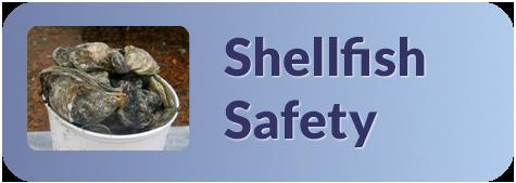 Shellfish banner