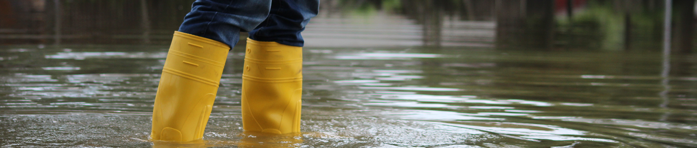 Yellow Boots in floodwater