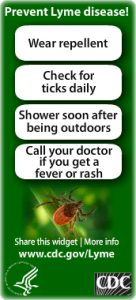 LymeDisease_full